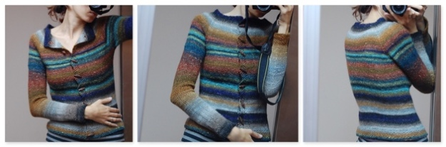Noro Silk Garden Top Down Raglan COMBO